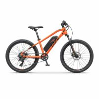 "Elektrokolo MTB 24"" Apache Tate black orange"